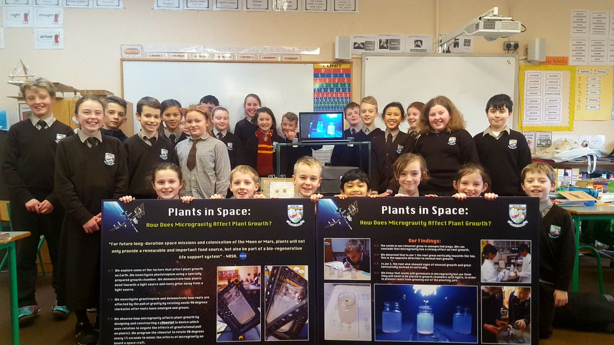 Bronte Primary Science